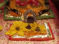 Puja Photos Deities
